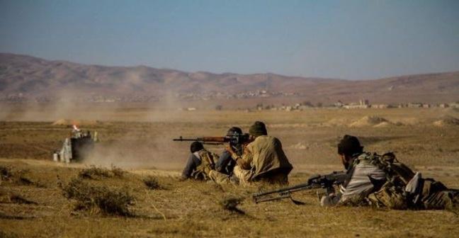 al-hashd-al-shaabi-fighter-in-tal-afar-650x433