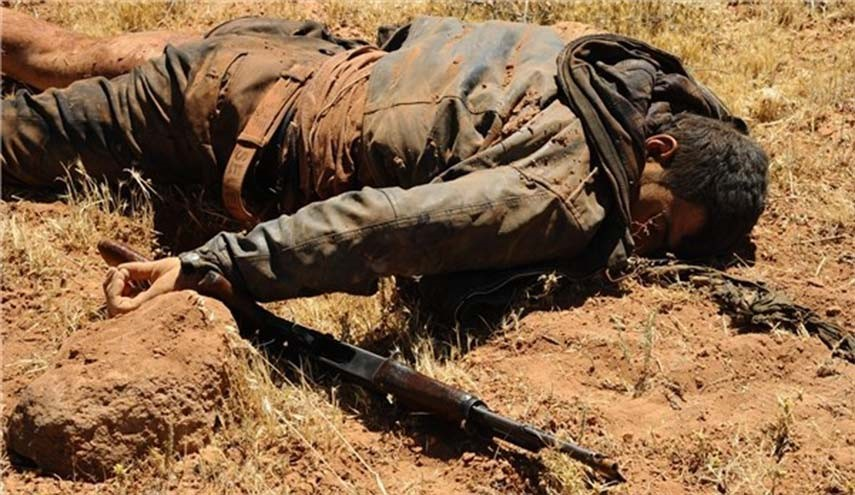 Top Commander of Terrorists in Aleppo City Killed in Syrian Army Attack